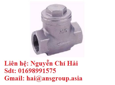 check-valve.png